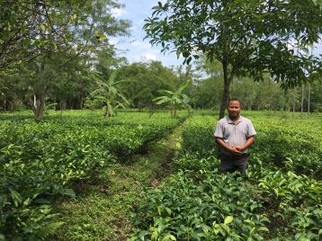 Tenzing smiles in his tea estate.